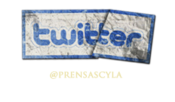 4314_1_twitter.png