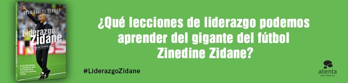 7331_1_1140x272_Zidane.jpg